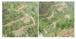 Project Near-Airport Shimla